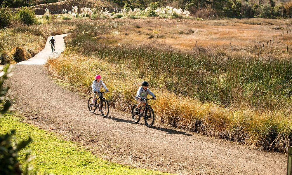 Omokoroa cycleway